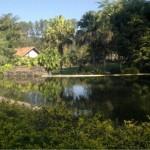 hotel-fazenda-vintem-lago